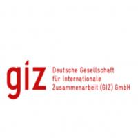 Giz squared